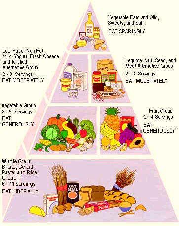 vegetarian food pyramid. Black Bedroom Furniture Sets. Home Design Ideas